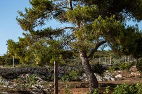 Terra Lucis Mountain Residences Zakynthos Greece