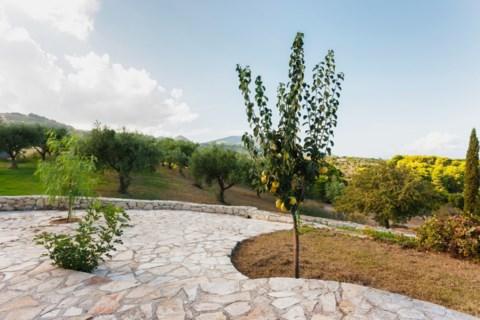Βίλα Αμπέλι Zakynthos Greece