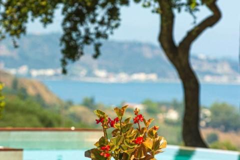 Wild Oak Estate Zakynthos Greece